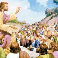 Evangelio del 16 de junio del 2020