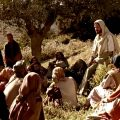 Evangelio y lecturas del 16 de octubre del 2020